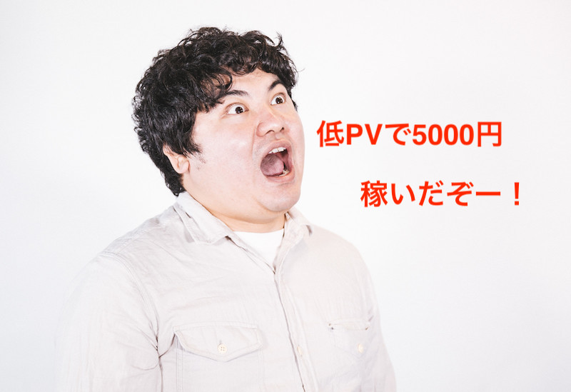 低PVで5000円稼いだ